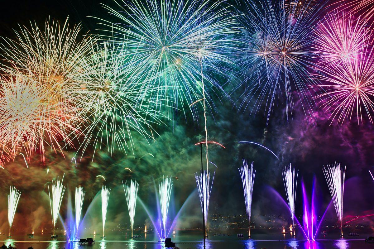 dogs fireworks blog header
